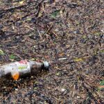 Biodegradation waste | Waste management