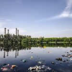 Environmental pollution | Due to human activities