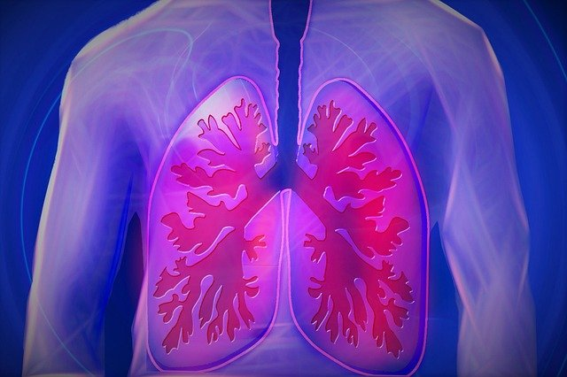 Endotoxin | Effect on Lungs