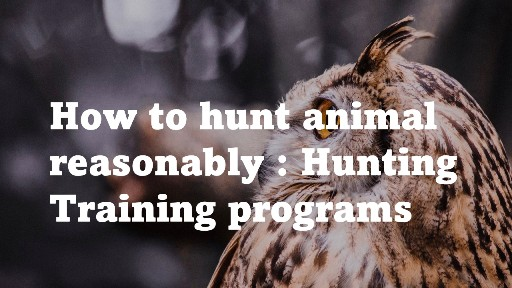 How to hunt animal resionably Hunting Training programs